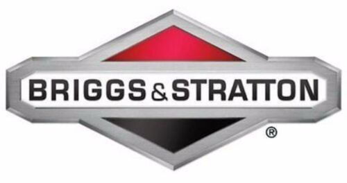 Main Jet Briggs /& Stratton 696134  Replacement for Model 697291 OEM NEW