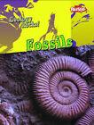Fossils by Rebecca Faulkner (Paperback, 2008)