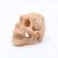 Resin-Skull-Aquarium-Decoration-Terrarium-Reptile-Cave-Fish-Tank-Ornaments-New thumbnail 2