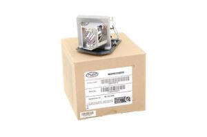 Beamerlampe f/ür OPTOMA HD25e Projektoren Alda PQ Original Markenlampe mit PRO-G6s Geh/äuse