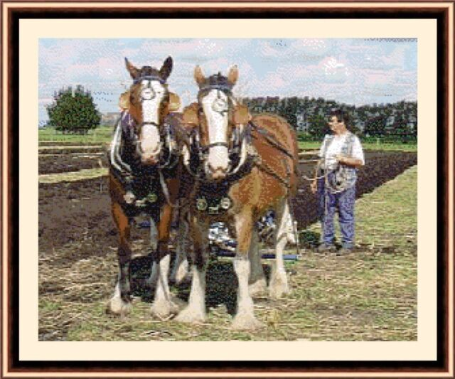 Clydesdale Horses At Work, Cross Stitch Kit