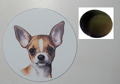 CHIHUAHUA Hund dog Taschen Spiegel pocket  MIRROR CC1