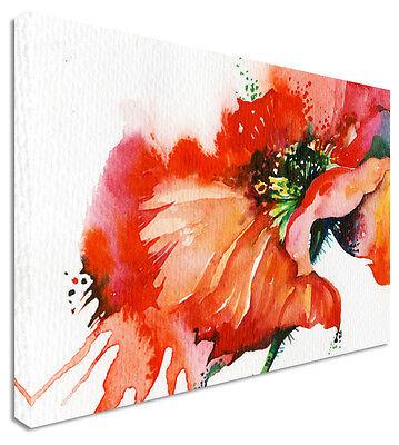 Large Poppy Watercolour Splash Print - Floral Flower Canvas Wall Art Picture