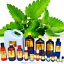 3ml-Essential-Oils-Many-Different-Oils-To-Choose-From-Buy-3-Get-1-Free thumbnail 75