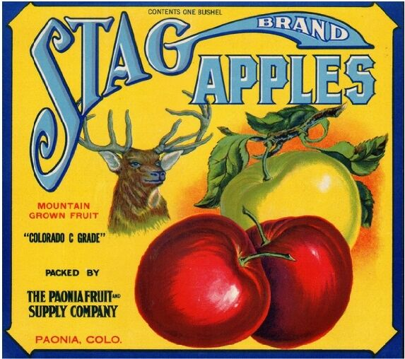 Henderson Kentucky Cardinal Bird Apple Fruit Crate Label Vintage Art Print