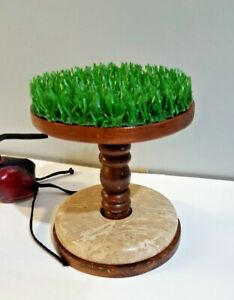 Falconry-Wood-Block-Perch-5-5-034-Kestrel-amp-Merlin-Marble-amp-AstroTurf-Small-Size