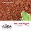 FloweRock-5LB-Red-Lava-Rock-Nugget-2-Pack thumbnail 1