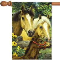 Toland - Horse Family - Farm Pasture Field Fence Flower Spring House Flag