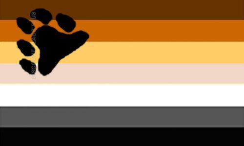 Rainbow Bear Flag Gay Pride Lesbian LGBT 3x5 Polyester