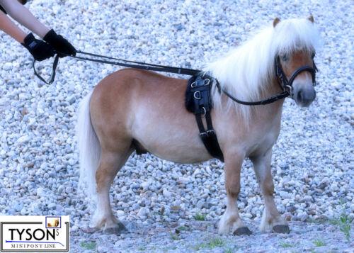 Doppellonge Neopren Minishetty Mini Shetty S P VB WB f Longiergurt Gurt 16 Rig