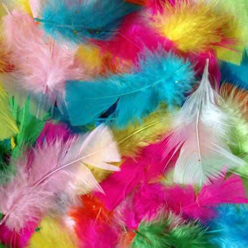 FOR ARTS /& CRAFTS DECORATIONS 5g PACK. MIXED COLOURED FEATHERS