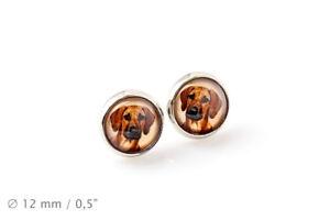 Rhodesian Ridgeback, Pet in your ear, earrings, photo jewelry, Handmade