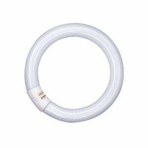 OSRAM-Lampe-fluorescente-T9-L-en-forme-d-039-anneau-LUMILUX-Tubes-G10Q