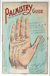 Bangla Palmistry Book