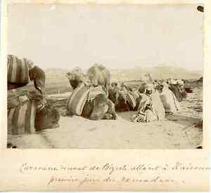 Tunisie-Caravane-allant-a-Kairouan-Vintage-albumen-print-Tirage-albumine