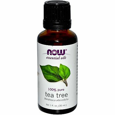 NOW Foods Essential Oils 100% Pure Aromatherapy 1 fl. oz. CHOOSE SCENT