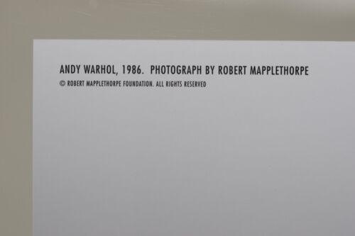 ANDY WARHOL by ROBERT MAPPLETHORPE Kunst-Postkarte