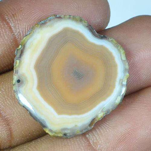 Natural designer Agate Slices Cabochon pendant loose Gemstone
