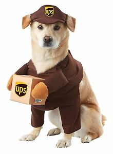 California-Costumes-UPS-Pal-Mail-Delivery-Animal-Dog-Halloween-Costume-PET20151