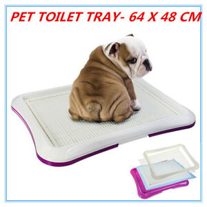 Indoor Pet Cat Puppy Dog Potty Training Portable Toilet Large Loo ...