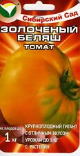 """Tomato """"The gilded Belyash""""  Russian High Quality seeds"""