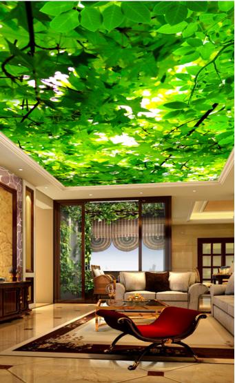 3D Grüne Blätter 833 Fototapeten Wandbild Fototapete BildTapete Familie Familie Familie DE Kyra | Verschiedene Stile  | Charmantes Design  | Moderne Technologie  36b21c