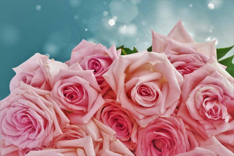 US Seller- artwork prints for sale rose flower botanical artwork poster 3