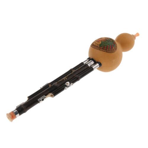Einfach und elegant professionelle C-Ton Hulusi Cucurbit Flöte Instrument