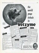 BEARDED COLLIE OUR DOGS 1951 DOG BREED KENNEL ADVERT PRINT PAGE VETZYME