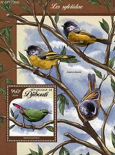 Gibuti 2016 Gomma integra, non linguellato Songbirds 1v S/S BIRDS sylvidae vecchio mondo Usignoli myzornis
