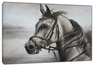 Ambitieux White Horse Drawn With Charcoal Soft Pastel Imprimé Sur Encadrée Toile Wall Art-afficher Le Titre D'origine