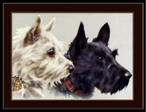 English Print Fox Scottish Terrier Puppy Dog Puppies Dogs Poster Art Picture
