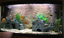 3D-Thin-Rock-Aquarium-Background-Size-58x40cm-Can-Fit-Fluval-Roma-90 thumbnail 4