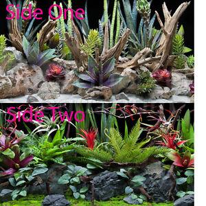 Seaview-Desert-Dream-Deep-Flora-18-034-Inch-Aquarium-Terrarium-Background