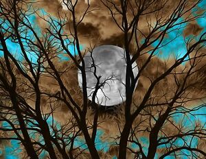 Teal Brown Tree Moon Modern Home Decor Wall Art Matted Picture