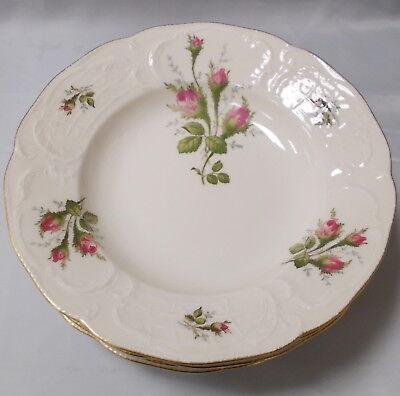 Moosrose elfenbeinfarben Goldrand v 6 Suppenteller Ø 24 cm Rosenthal 455