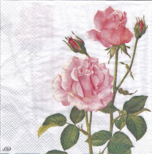 Inglés Flor las servilletas de papel Rosa Rosa Para Te Ideal Hogar Gama Ihr