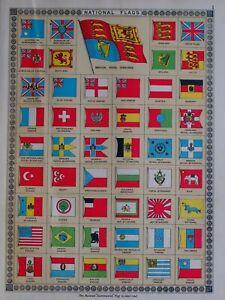 1919-PRINT-NATIONAL-FLAGS-POLAND-SPAIN-NORWAY-BELGIUM-JAPAN-PERSIA-ECUADOR