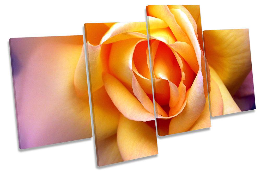 Flor Floral rojo Rosa Amarilla de LONA pa rojo Floral  arte impresión de múltiples imágenes cbad7b