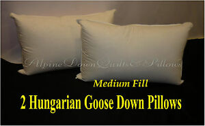 2-NEW-HUNGARIAN-GOOSE-DOWN-MEDIUM-PILLOWS-KING-FILL-POWER-100-COTTON-COVER