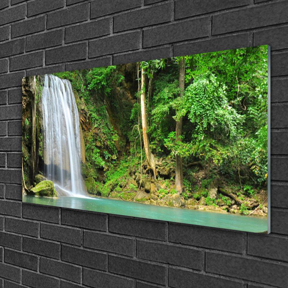Tableau sur verre Image Impression 100x50 Nature Forêt Chute D'eau