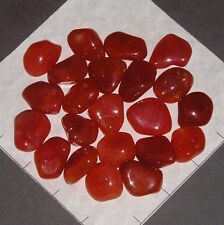 CARNELIAN Botswana Agate med-lg tumbled 1/2 lb bulk stones orange