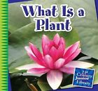 What Is a Plant by Jennifer Colby (Hardback, 2014)