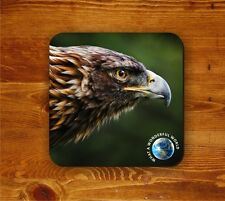 The Majestic Eagle coaster - What a wonderful world