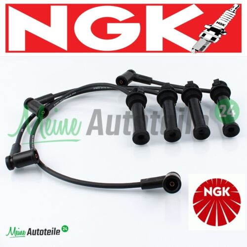 ORIGINALE NGK Accensione Set rc-fd1207 6984 FORD FOCUS MONDEO MAZDA 6 Prezzo Top