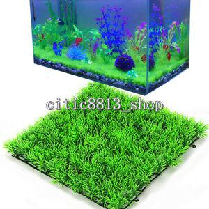... -Water-Aquatic-Green-Grass-Plant-Lawn-Aquarium-Fish-Tank-Landscape