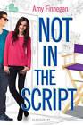 Not in the Script by Amy Finnegan (Paperback / softback, 2014)