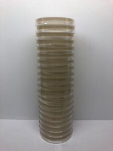20-Pre-poured-Potato-Dextrose-Yeast-Agar-PDYA-Petri-Dishes-100x15mm-Parafilm