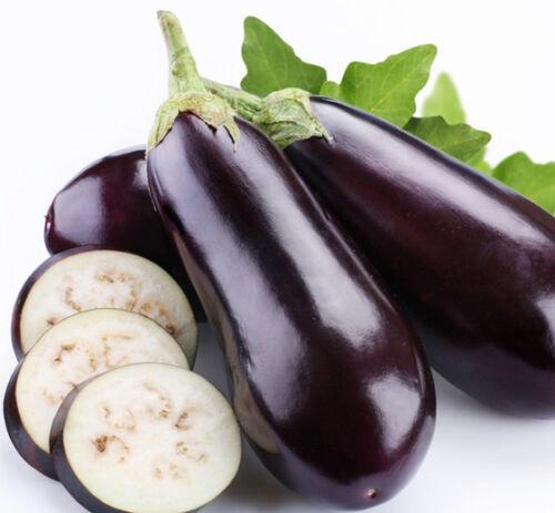 Purple Eggplant Seeds Vegetable Seeds Long Purple Eggplant Seed Organic Bonsai
