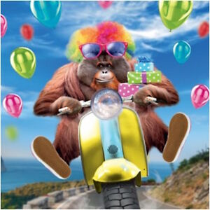 Details About FIZZY POP 3D HOLOGRAPHIC BIRTHDAY CARD FUNNY MONKEY ON A SCOOTER 1STPP